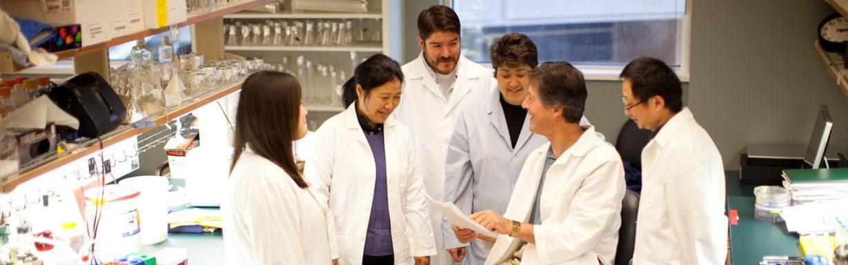 Rapraeger lab